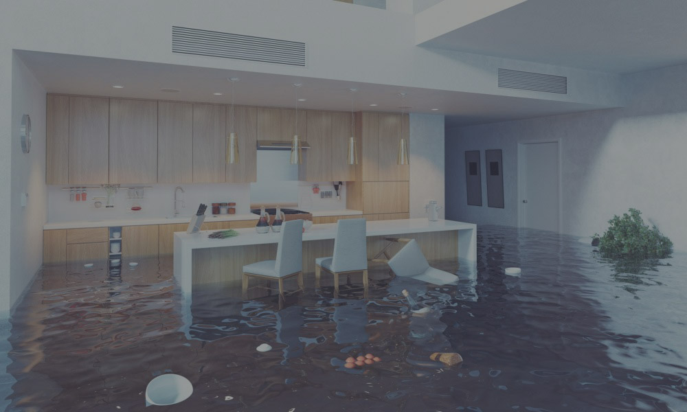 water restoration company ogden - certified Disaster