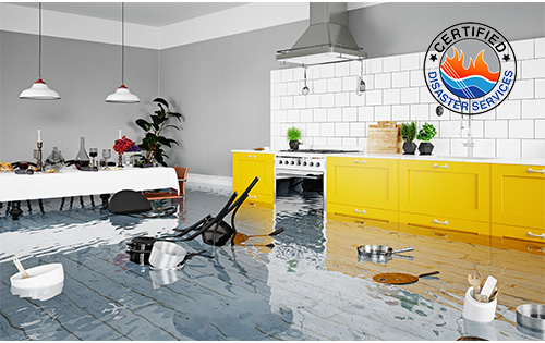 Save your House and Business: Water Damage Restoration