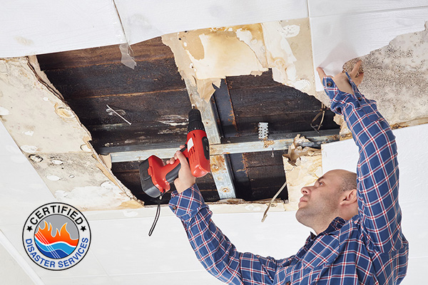 Repair technician using power tools to remove a portion of the ceiling damaged by molds