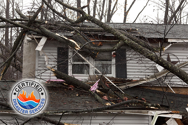 Storm Damage Restoration in Utah: What to do After the Storm