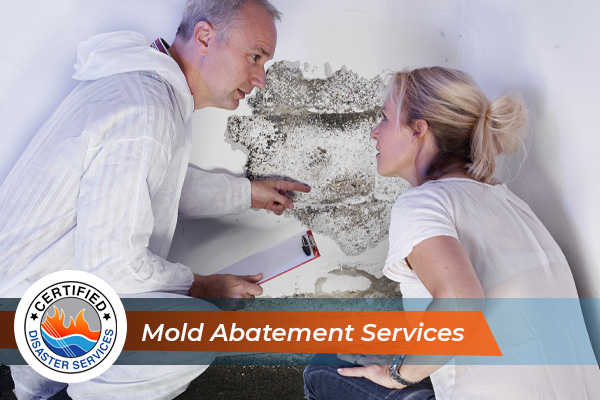 """Certified Disaster Services repair professional pointing at mold damages on the wall and explaining to the homeowner how he will fix it, with the caption """"Mold Abatement Services"""""""
