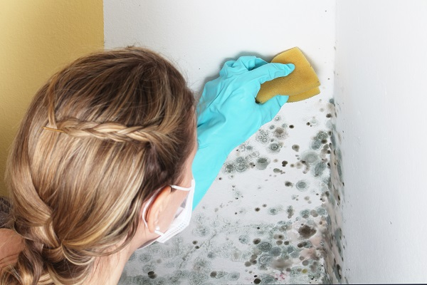 How to Prevent Mold Growth in Winter