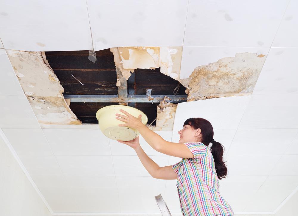 Ceiling Repair Water Damage