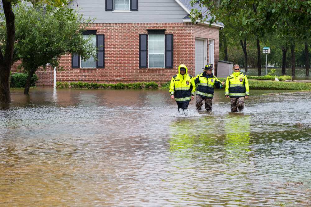 Disaster Recovery Services near me